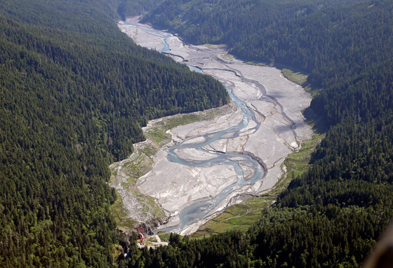 The Elwha River flows freely through the drained bed of Lake Mills near Port Angeles, Washington.