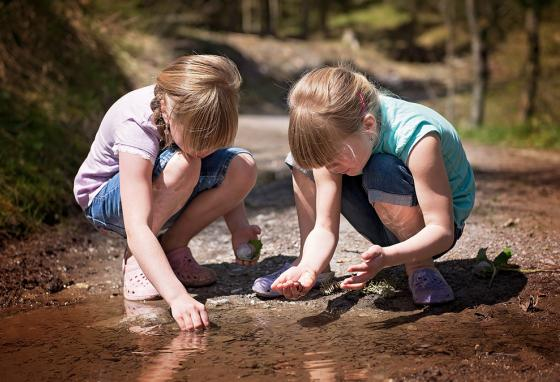Kids search for frog eggs at the edge of a pond.