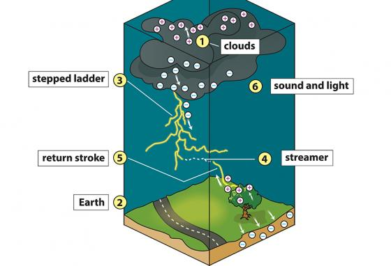 This image shows how lightning travels from cloud to ground. (R. Bishop)