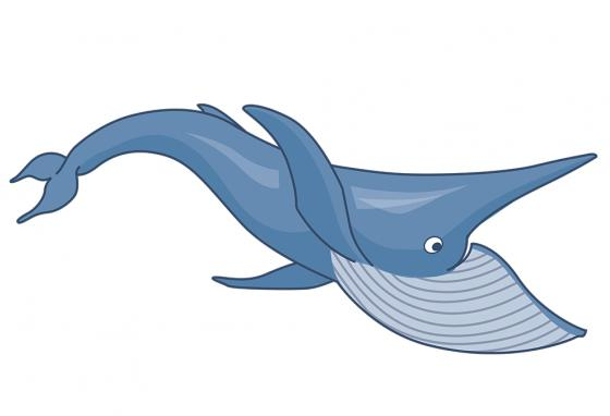 Welcome to the cetacean club. Cetus is Latin for whale. (RB)