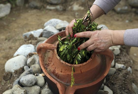 Yiannoula Lazarou puts herbs into a clay pot to start a replica 2nd millennium B.C. distiller. (AP)