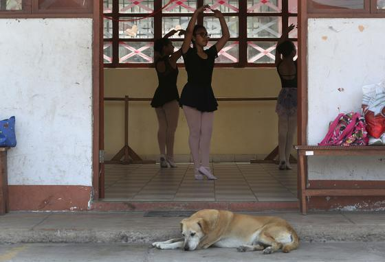 A stray dog sleeps while young ballet dancers practice in a studio at a public school in the Chorrillos neighborhood, a poor part of Lima, Peru. (AP)