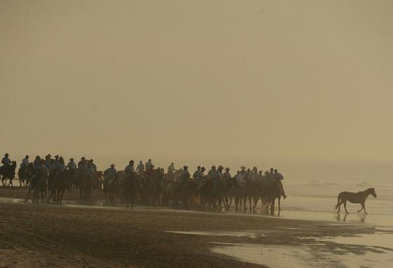 A pony wanders into the surf as saltwater cowboys lead the herd at Assateague Island, Virginia. (AP)