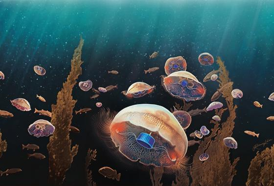 An illustration of robot jellies swimming in the ocean