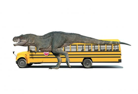 A Tyrannosaurus Rex was about the size of a school bus.