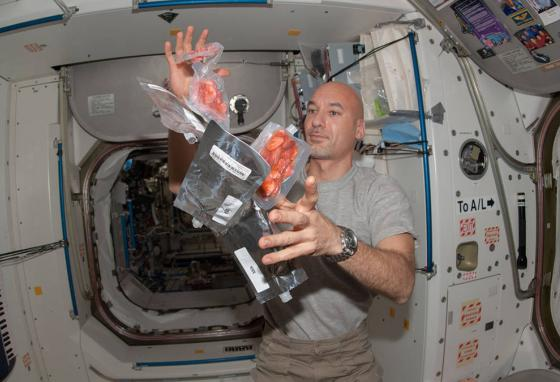 Astronaut Luca Parmitano watches food packages float inside the International Space Station. Zero gravity presents challenges for food preparation. (NASA)
