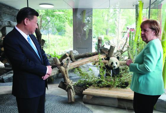 China's President (left) presents Germany's leader with two panda bears. (AP)