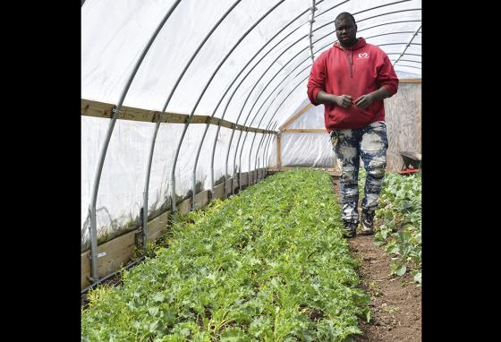 Classes may be closed. But Malcolm Evans, manager of a community farm in Chicago, says he's still growing food for others. (AP)
