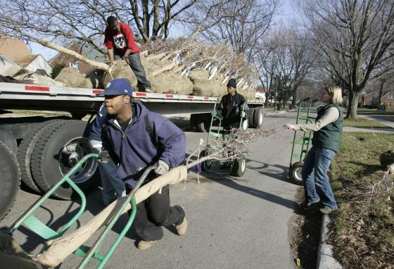 Crews unload a trailer stocked with trees in Detroit, Michigan. A nonprofit group is working toward urban reforestation in that city. (AP/Carlos Osorio)