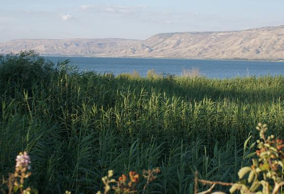 The Sea of Galilee, also known as Lake Kinneret, in northern Israel (AP)