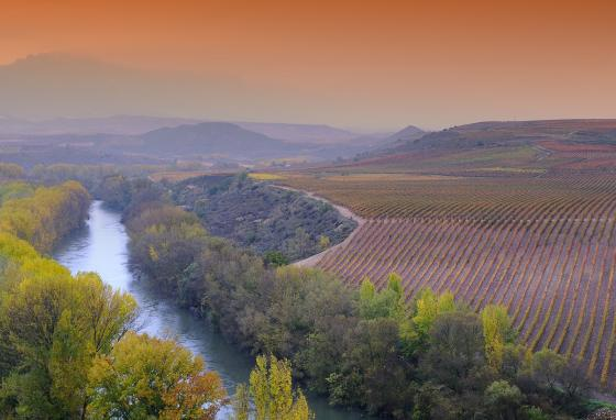 La Rioja, Spain, is known for its vineyards.