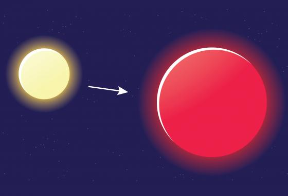 """Some new stars are medium-sized """"average stars"""" (left). When an average star uses up its hydrogen, its core collapses into itself and becomes hotter. That makes the star expand. It is now called a """"red giant"""" (right). (Krieg Barrie)"""