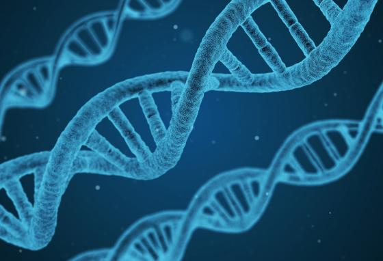 Scientists found that identical twin DNA can have tiny differences.