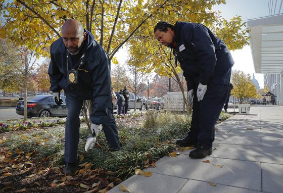 Workers Gregory Cornes (left) and Andre Pitman search flowerbeds for rat burrows near the U.S. Capitol building in Washington, D.C. (AP)