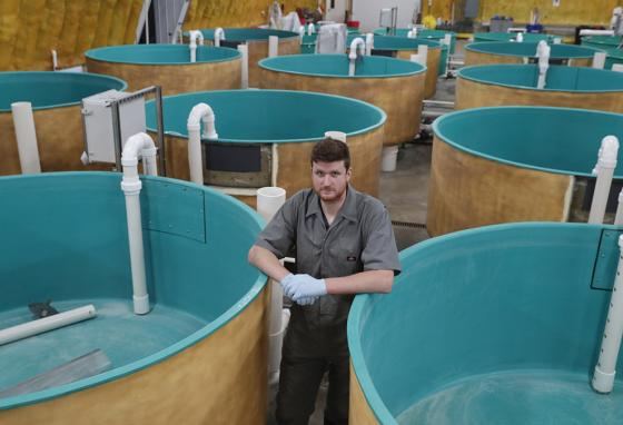 AquaBounty's nursery tank building in Albany, Indiana (AP)