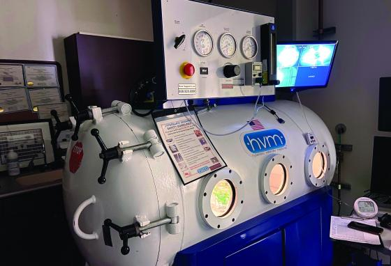 The vets put Louie in this hyperbaric chamber. (University of Florida College of Veterinary Medicine/AP)