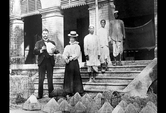 Ronald Ross (left) in Calcutta, India, using caged birds to study the spread of the malaria parasite. (LOC)