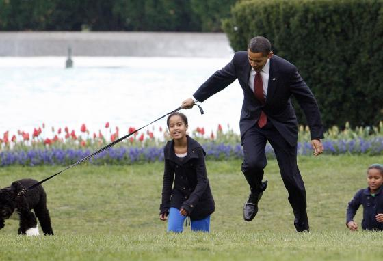 Former President Barack Obama is almost pulled off his feet by dog Bo, with his daughters Malia, left, and Sasha Obama, right. (AP/Ron Edmonds)