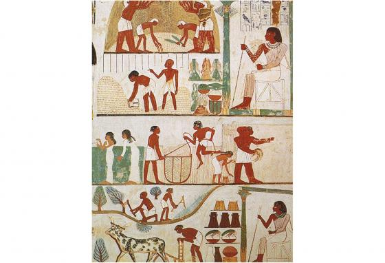 This art from an Egyptian tomb shows scenes of threshing, a grain store, harvesting with sickles, digging, tree-cutting, and plowing.