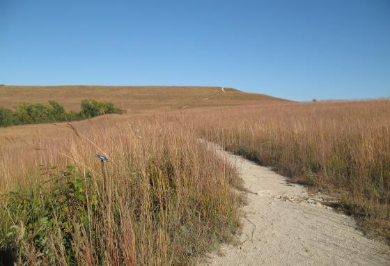The Konza Prairie in Flint Hills is known for its preserved tallgrass prairie.