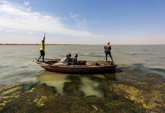 Sudanese fishermen sail through river algae while fishing on the Nile River. (AP)