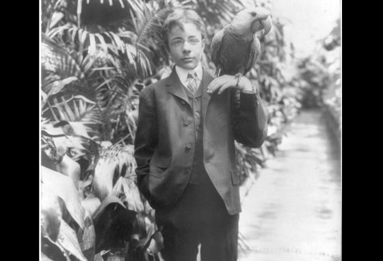 President Teddy Roosevelt's son poses with the family's pet macaw. (Library of Congress)
