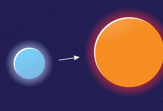 """""""Massive stars"""" (left) are much larger and have more mass than average stars. A massive star burns through its hydrogen faster than an average star, turning into a """"red supergiant"""" (right). (Krieg Barrie)"""