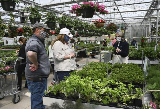 According to an employee at Whitney's Farm Market in Massachusetts, about 30% of its customers are buying vegetable plants for the first time. (AP)