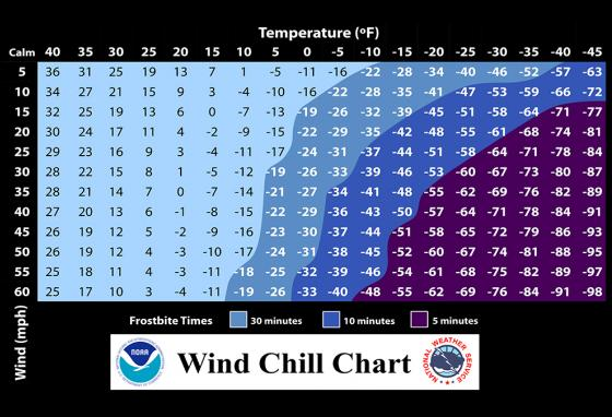 Exposure to Arctic wind chill can cause frostbite in just minutes! (NOAA)