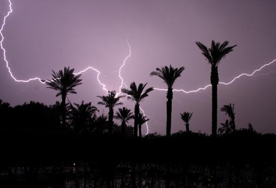 Ask your parents to help you look up all the references to lightning in the Bible. (AP)