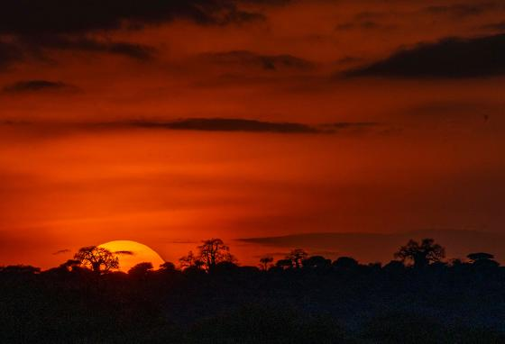 The Sun sets on Tanzania's Tarangire National Park.