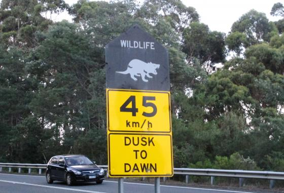 A sign warns drivers to beware of Tasmanian devils in Tasmania state, Australia. Tasmanian devils, like all animals, are God's creation. But they are not made in His image like people are. (AP)