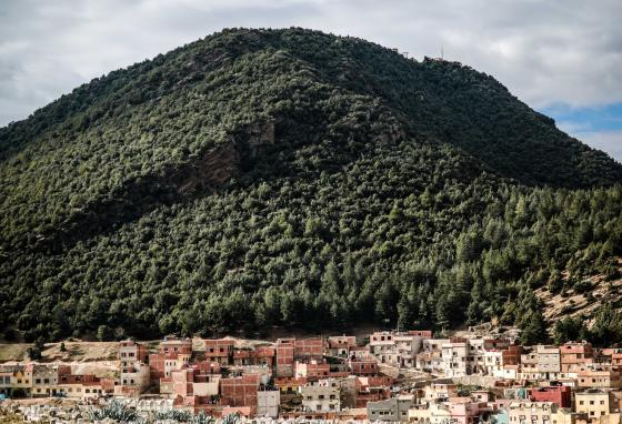 These Amazigh houses stand in Azrou, Morocco. (AP/Mosa'ab Elshamy)