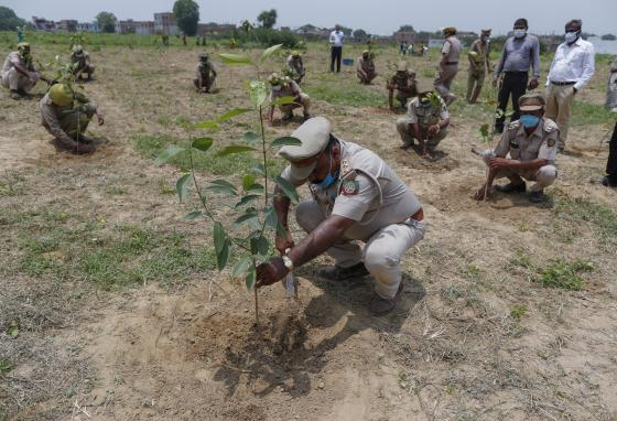 Lawmakers, government officials, and volunteers came out to plant trees. (AP/Rajesh Kumar Singh)