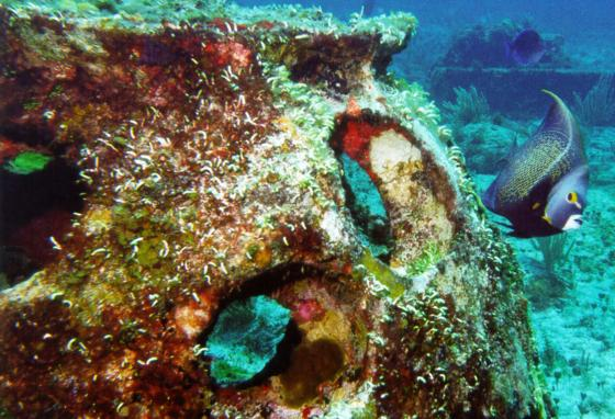 Some artificial reefs use structures specifically designed as fish shelters or to mimic natural reefs. They are built to stay put in storms. This is a reef ball near Isla Mujeres, Mexico. (AP)