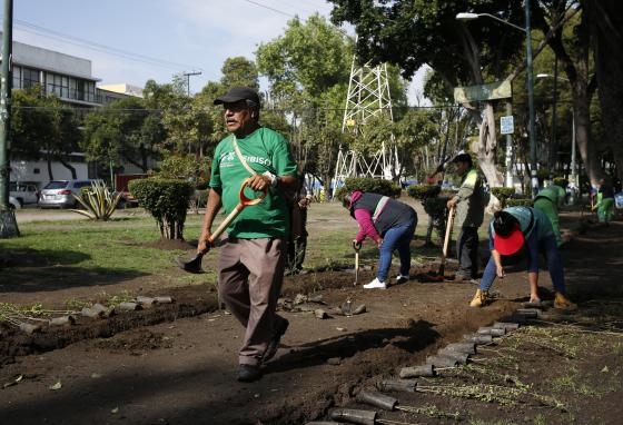 A group of volunteers plants trees as part of a reforestation program in Mexico City, Mexico. (AP/Ginnette Riquelme)